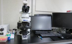 형광현미경 1