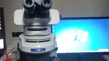 형광현미경 2