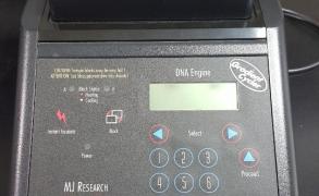 Gradient PCR