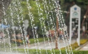 삼육대의 여름