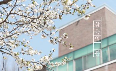 [영상스케치] 삼육대학교 캠퍼스에 찾아온 봄