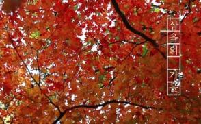 삼육의 가을